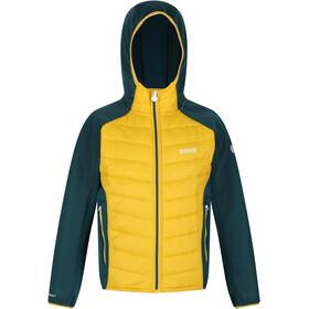 Regatta Kielder Hybrid IV Jacket Kids, geel/groen